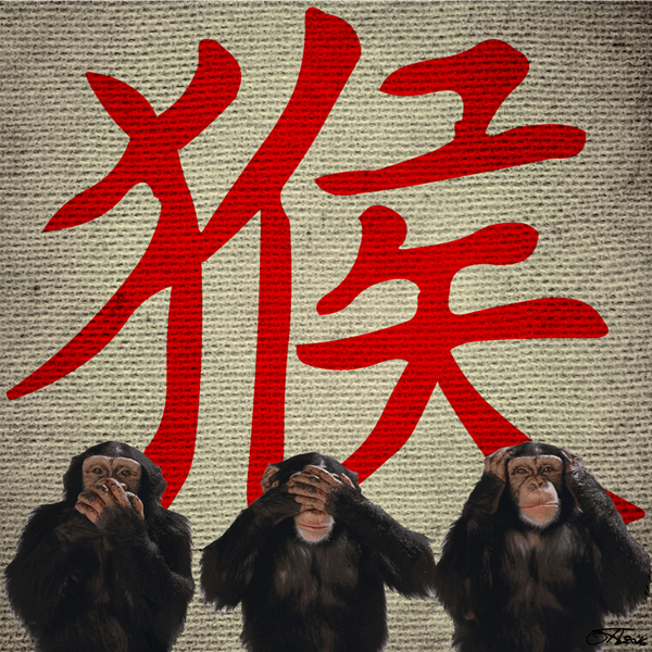 Toby Anderton YEAR Of The MONKEY digital painting & design